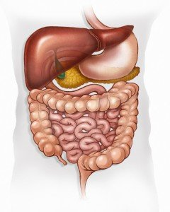SSD Benefits for Crohn's Disease, IBS & Colitis